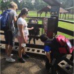 Školní výlet Zoopark Chomutov